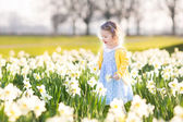 Girl playing in a field of yellow daffodil flowers — Photo
