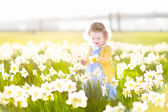 Girl playing in a field of yellow daffodil flowers — Foto de Stock