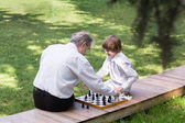 Grandfather and grandson playing chess in a park — Stock Photo