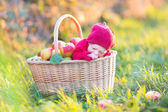 Newborn baby in big basket with apples — Photo