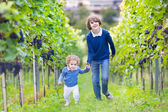Boy and his baby sister running together in a vine yard — Stock Photo
