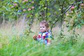 Baby girl eating an apple — Foto Stock