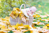 Newborn baby in a basket — Stock Photo