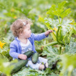 Baby girl sitting in a farm field next to a zucchini plant — Stock Photo #43250481
