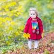 Little baby girl in a sunny autumn park — Stock Photo