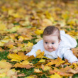 Baby girl playing in an autumn park — Stock Photo #43252045