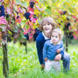 Cute happy boy and his adorable baby sister picking fresh grapes together — Stock Photo #43252235