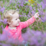 Baby girl walking in purple autumn flowers — Stock Photo #43252263