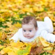 Baby girl playing in an autumn park — Stockfoto #43252287