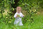 Girl eating apples in the garden — Zdjęcie stockowe