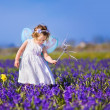 Cute toddler girl in fairy costume in a flower field — Stock Photo #46973101