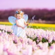 Cute toddler girl in fairy costume in a flower field — Stock Photo #46973575