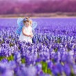 Cute toddler girl in fairy costume in a flower field — Stock Photo