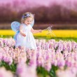 Cute toddler girl in fairy costume in a flower field — Stock Photo #46973579