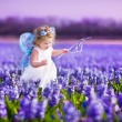 Cute toddler girl in fairy costume in a flower field — Stock Photo #46973581