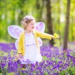 Toddler girl in fairy costume in bluebell forest — Stock Photo #46990025