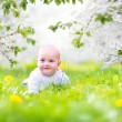 Cute baby in a blooming spring apple garden — Stock Photo #46990223