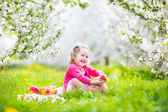 Cute toddler girl eating apple in a blooming garden — Stock Photo