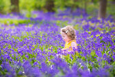 Cute toddler girl in bluebell flowers in spring — Stock Photo