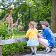 Brother and sister watching giraffes in a zoo — Stock Photo #48042235