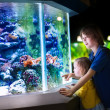 Brother and sister watching fishes in a zoo — Stock Photo #48042263
