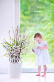 Little girl watering flowers at home — Stock Photo