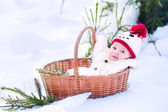 Baby boy in basket as Christmas present in winter park — Stock Photo