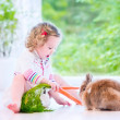 Little girl playing with a bunny — Stock Photo #49279157