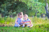 Kids playing with pine cones — Stock Photo