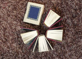 Small mini books — Stockfoto
