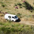 High angle view of countryside and a van pick up car — Stock Photo