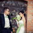 Wedding. bride and groom embracing against the backdrop of an old building — Stock Photo #43428405