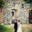 Wedding. bride and groom embracing against the backdrop of an old building — Stock Photo