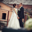 Wedding. bride and groom embracing against the backdrop of an old building — Stock Photo #43434035