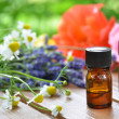 Herbal flowers and essential oils — Stock Photo #42781869