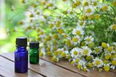 Herbal flowers and essential oils — Stock Photo