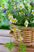 Herbal flowers — Stock Photo