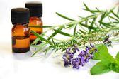 Aromatherapy oils — Stock Photo