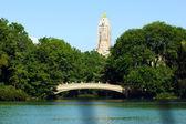 Most w central park — Zdjęcie stockowe