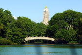 Puente en central park — Foto de Stock