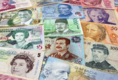 Faces of Money — Stock Photo