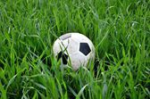 Soccer ball in the grass — Stock Photo
