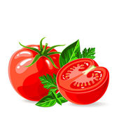 Fresh tomatoes with parsley and basil — Stock Vector