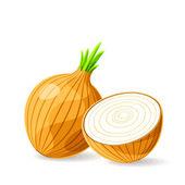 Fresh brown onions — Stock Vector