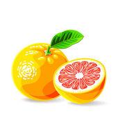 Fresh grapefruit's — Stock Vector