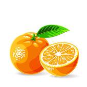 Fresh oranges — Stock Vector