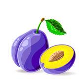 Fresh plums — Stock Vector