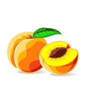 Fresh peaches — Stock Vector