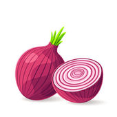 Fresh red onion on white — Stock Vector