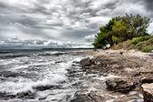 Costa salvaje — Foto de Stock
